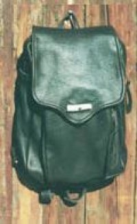 Day Pack - large - Product Image